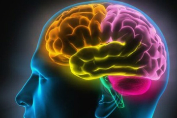 Emotional Intelligence - Colourful Brain